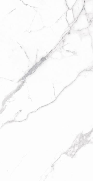 Carrara Premium Polished, Glazed 12x24 Porcelain  Tile