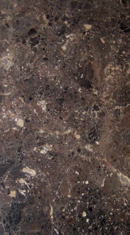 Marble Slabs Breche Nouvelle 0.79 in Polished Natural Stone Slab
