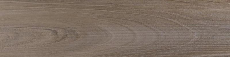 Savannah Sepia 6x24, Smooth, Plank, Color-Body-Porcelain, Tile