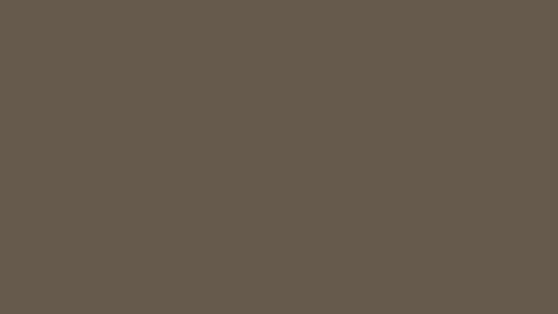 Group 3 Unsui Jumbo Size 63x128, 30 mm, Polished, Brown, Quartz, Slab