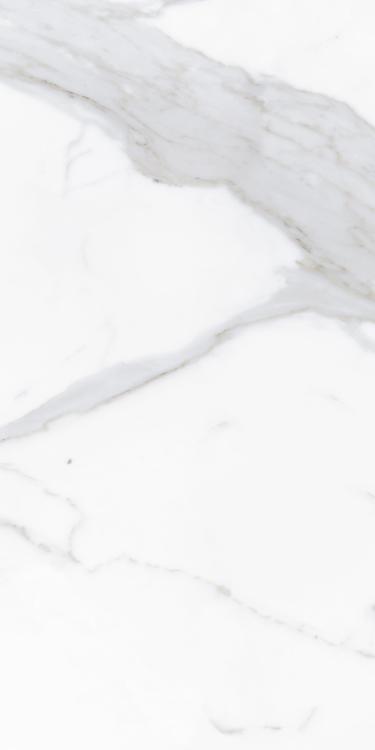 Prestigio Calacatta Soft Matte 12x24 Porcelain  Tile