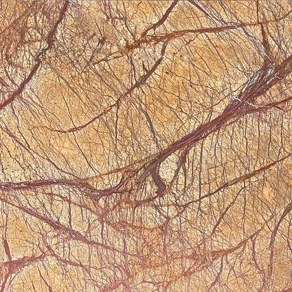 Rain Forest Brown Marble Tile 12x12 Brushed