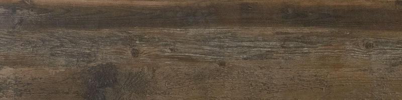 Preservation Petrified Gray 9x36, Matte, Plank, Color-Body-Porcelain, Tile