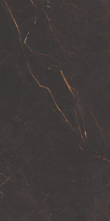 Galaxia Black Levigato Polished 12x24 Porcelain  Tile