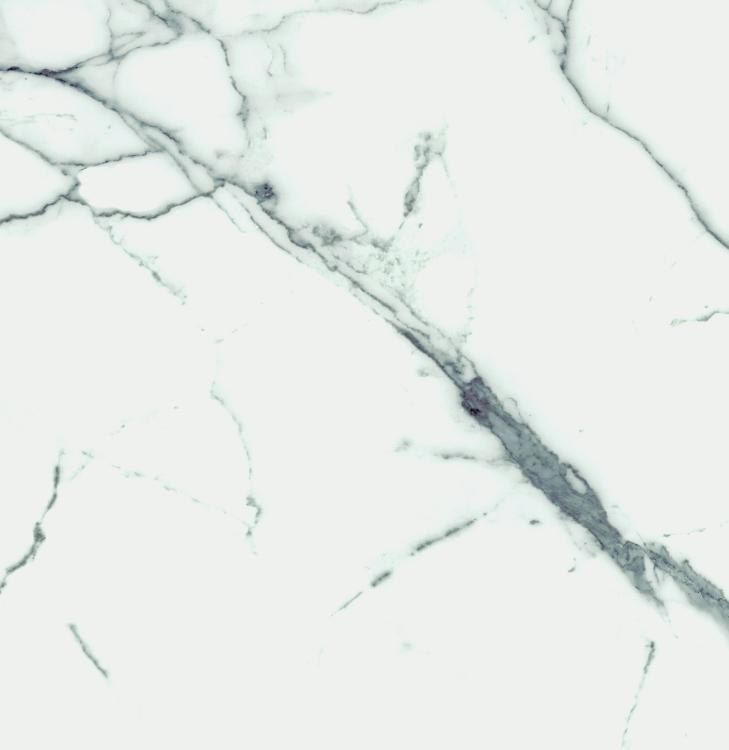 Carrara Premium Matte, Glazed 24x24 Porcelain  Tile