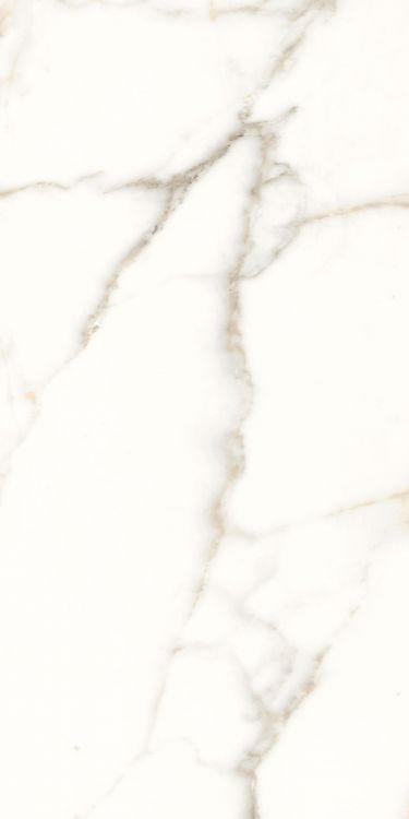 Trilogy Calacatta White Lux Polished 24x48 Porcelain  Tile