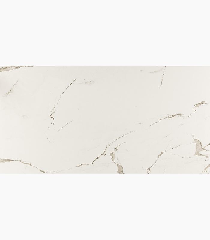Marble Albatros Calacatta Matte 24x48 Porcelain  Tile
