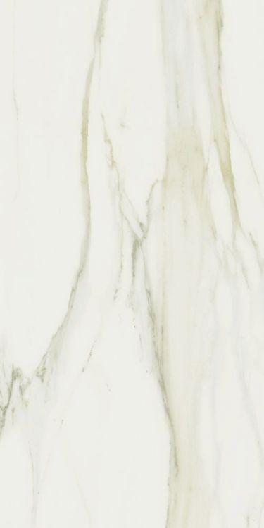 Classici Calacatta Gold Matte 24x48 Porcelain  Tile