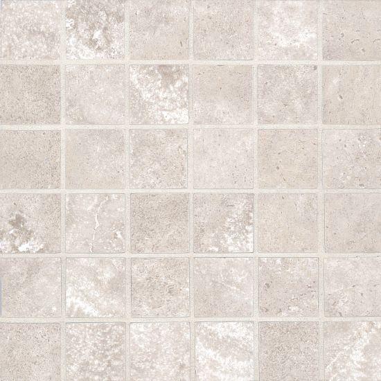 Roma 2.0 Clay 2x2 Square Matte Porcelain  Mosaic