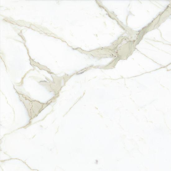 Magnifica The Thirties Calacatta Super White Honed 30x30 Color Body Porcelain  Tile