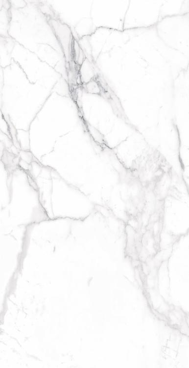 Carrara Premium Matte, Glazed 24x48 Porcelain  Tile