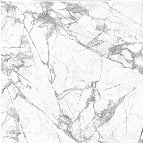 Marble Invisible White 57x120 0.75 in   Slab