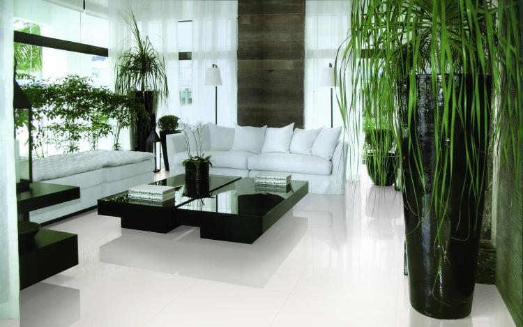 White Tile Super Polished, Unglazed 12x24 Porcelain  Tile