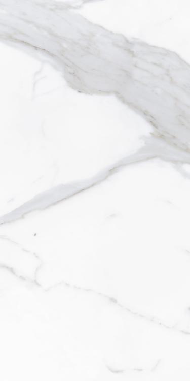 Prestigio Calacatta Lucido Polished 12x24 Porcelain  Tile