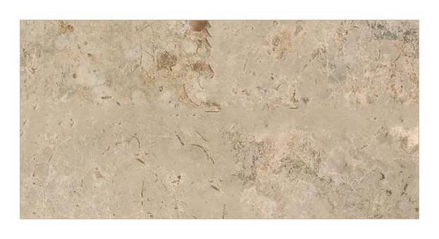 Napolina Limestone Tile 18x36 Honed