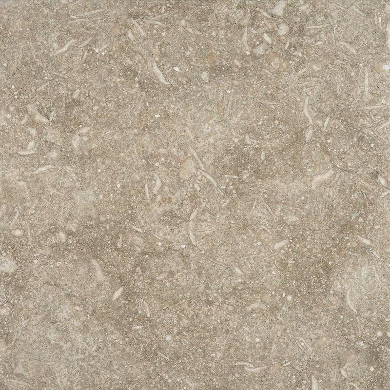 Seagrass Limestone Tile 18x18 Brushed